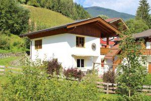 Alpensteinbock Saalbach L afbeelding 4