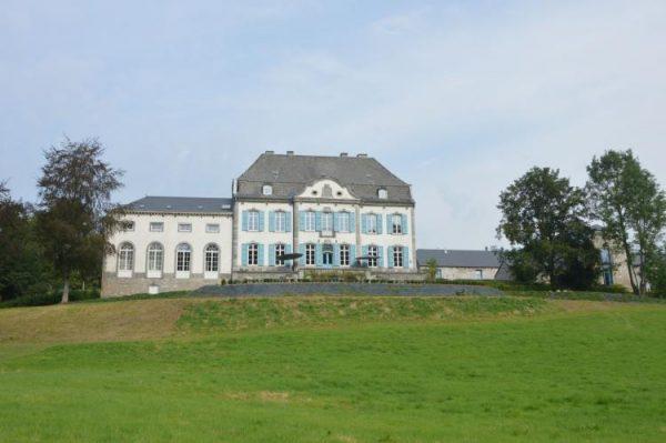Chateau des Deux Etangs 24 pers afbeelding 2