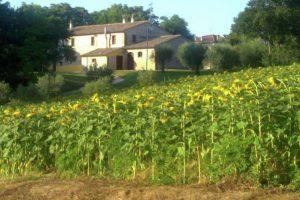 Villa Fano afbeelding 4