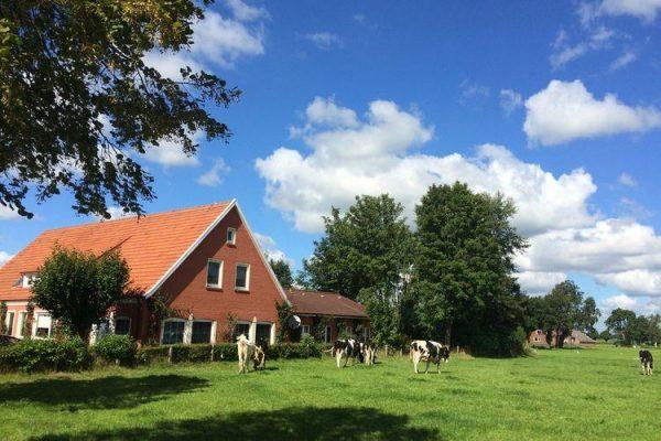Villa Ostfriesland XL afbeelding 1