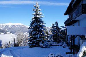 Villa Verditz afbeelding 3