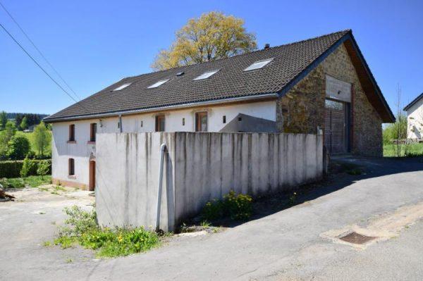 Alten Buche afbeelding 2